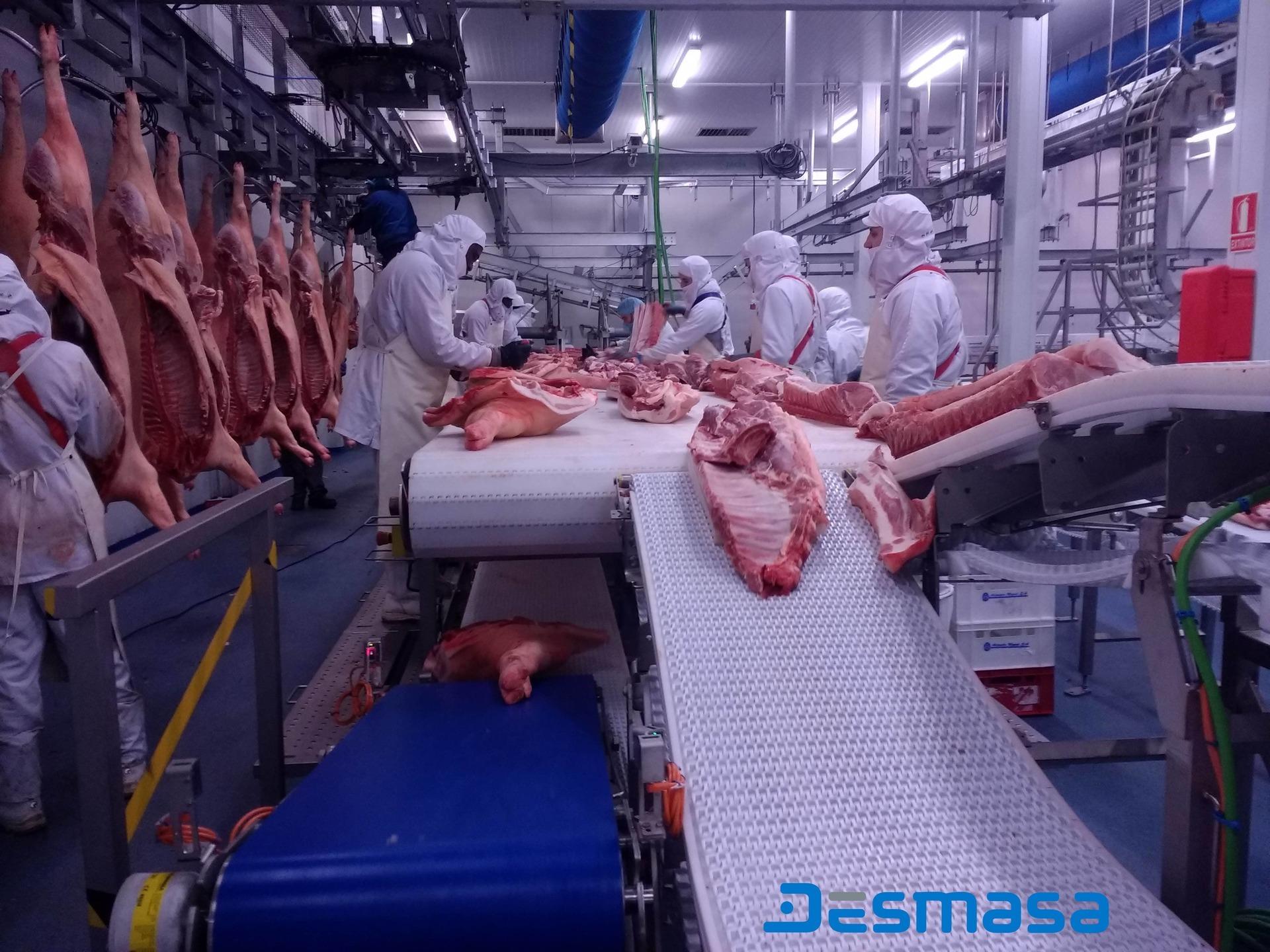Línea de manipulación y procesado de alimentos